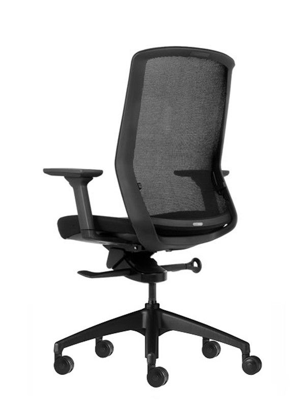 Aveya Mesh Back Office Chair