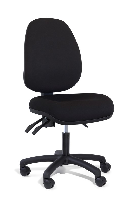 Gregory Ping High Back Ergonomic Office Chair